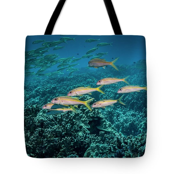 Yellowfin Goatfish  Mulloidichthys Tote Bag