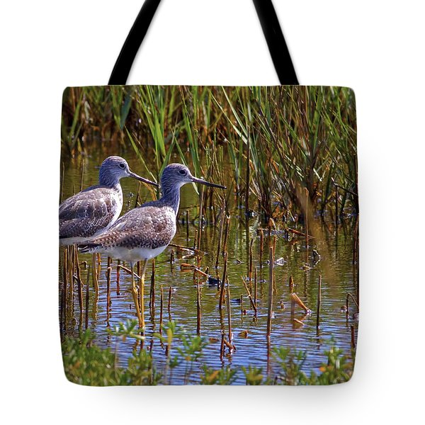 Tote Bag featuring the photograph Yellowlegs Of Texas by Gary Holmes