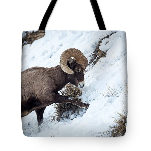 Yellowstone Bighorn Tote Bag