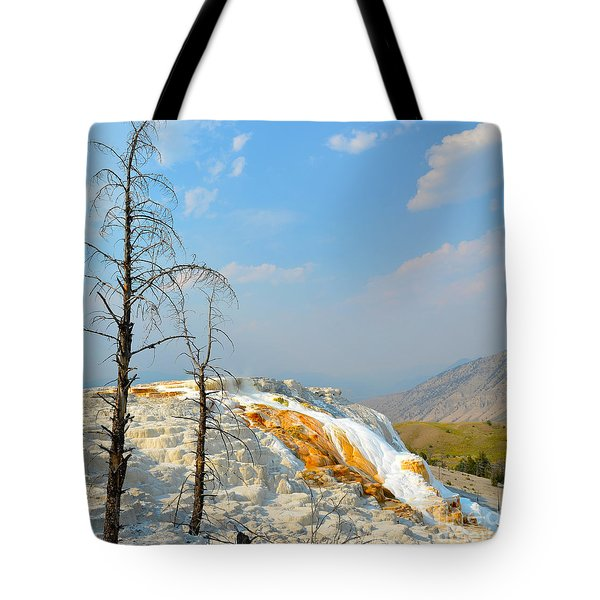 Yellowstone Canary Spring Tote Bag by Debra Thompson