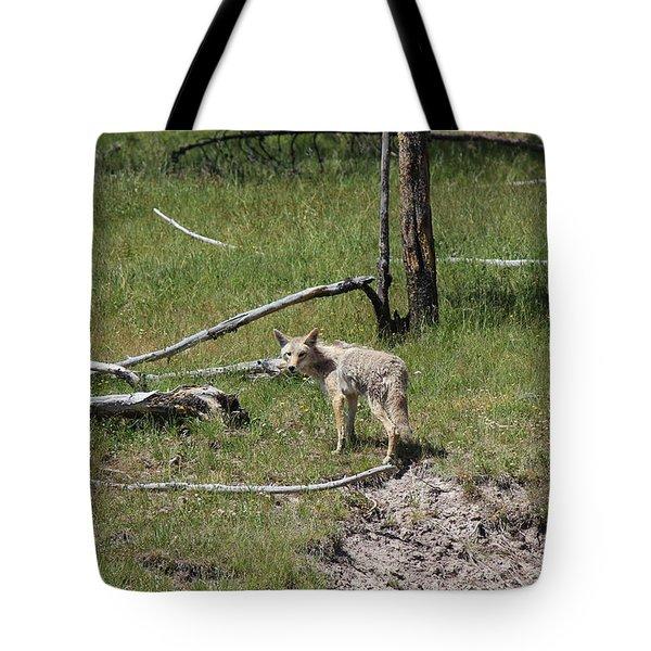 Yellowstone Coyote Tote Bag