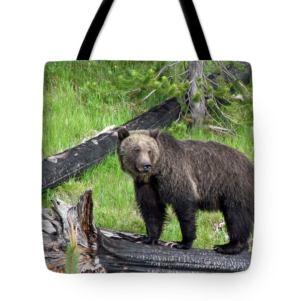 Yellowstone Grizzlies 2 Tote Bag