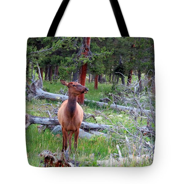Yellowstone Moments. Doe Tote Bag