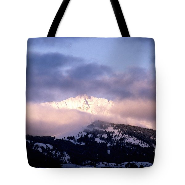 Tote Bag featuring the photograph Yellowstone Morning by Sharon Elliott