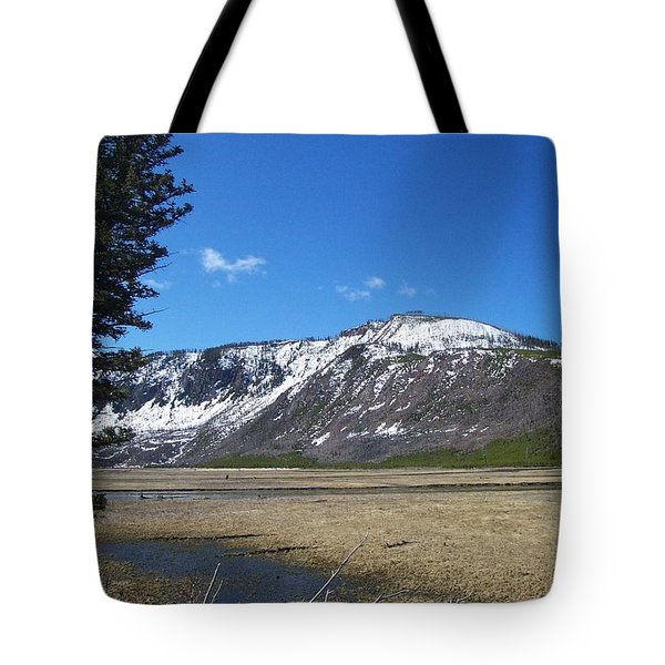 Yellowstone Park Beauty 1 Tote Bag