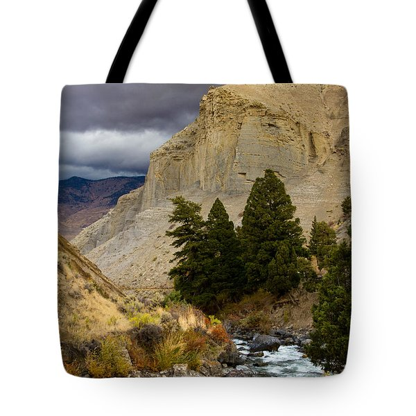 Yellowstone's Beauty Tote Bag