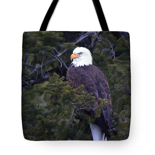 Yelowstone's Majesty Tote Bag