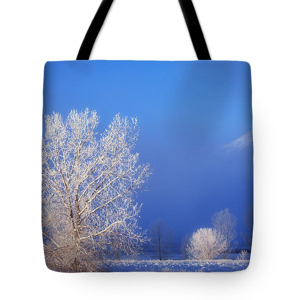 Yesterday's Blues Tote Bag by Darren  White