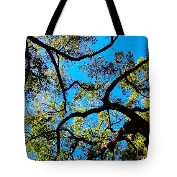 Yin Yang Midpoints Tote Bag