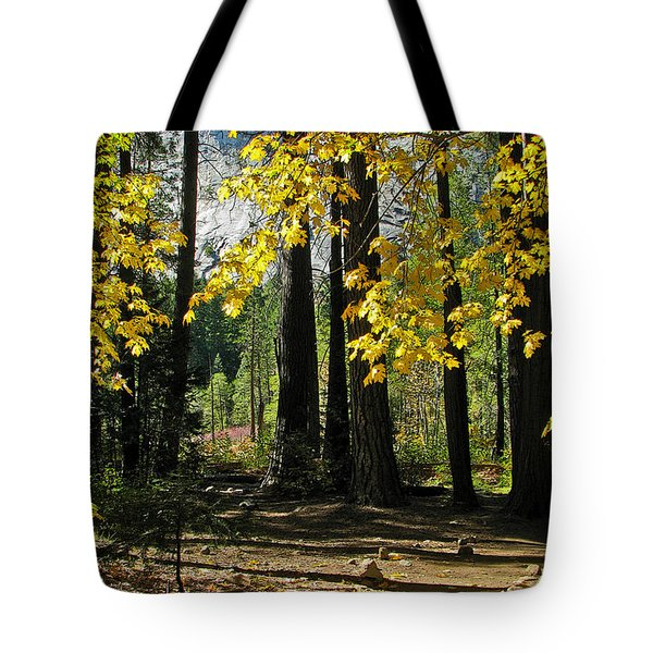 Tote Bag featuring the photograph Yosemite Fen Way by John Haldane