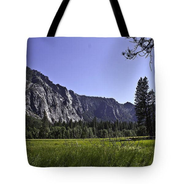 Tote Bag featuring the photograph Yosemite Meadow by Brian Williamson