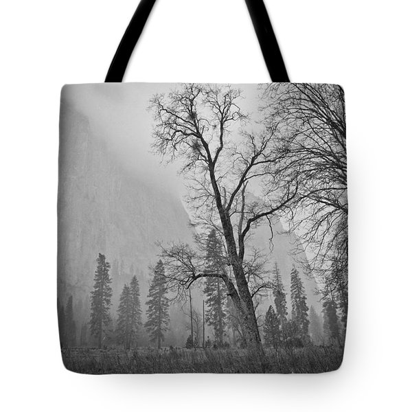 Tote Bag featuring the photograph Yosemite Storm by Priya Ghose