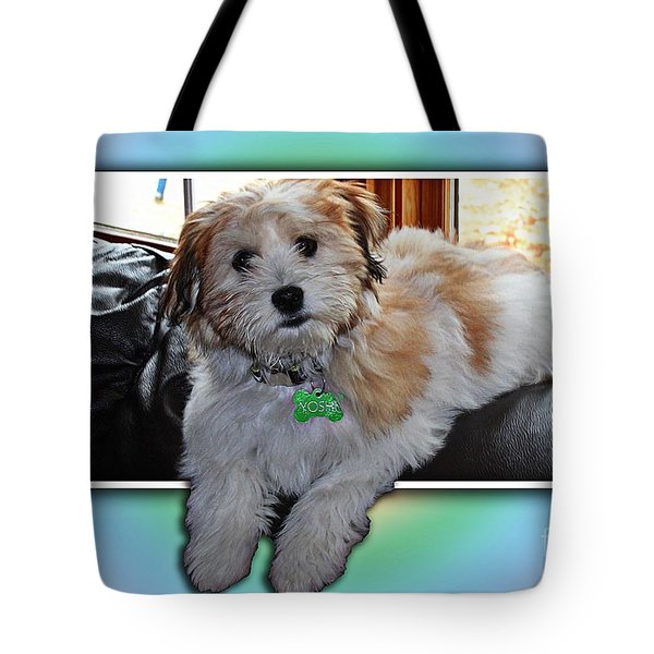 Yoshi Havanese Puppy Tote Bag by Barbara Griffin