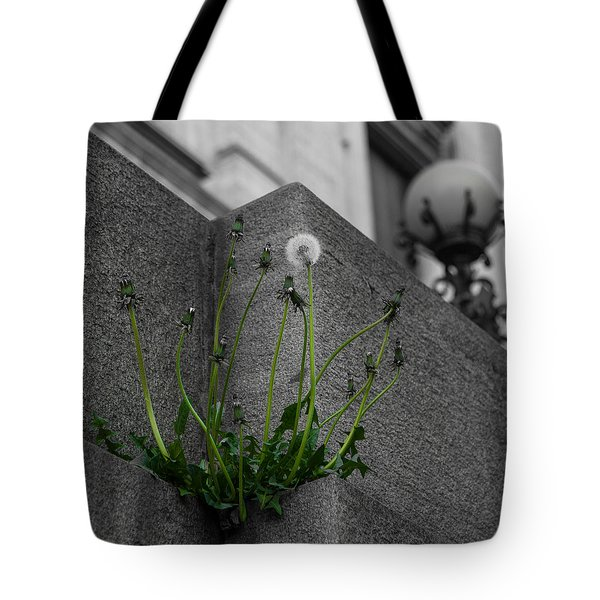 You Are Exactly Where You Are Supposed To Be Tote Bag