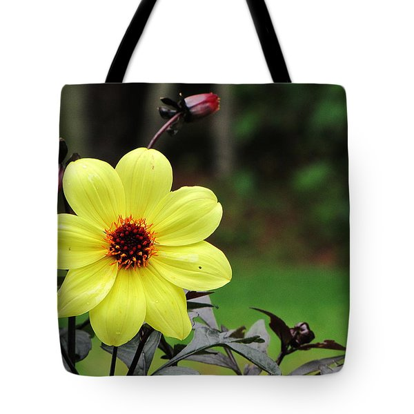 Tote Bag featuring the photograph You Are My Sunshine by Greg Simmons