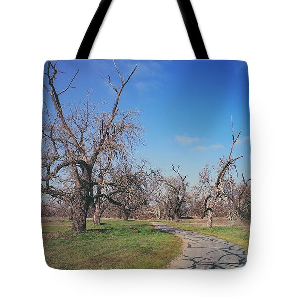 You Gave Me A Reason Tote Bag by Laurie Search