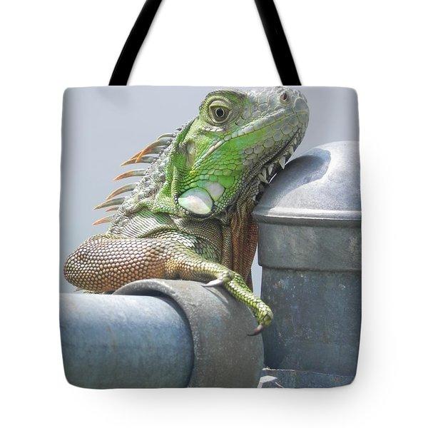 You Look'n At Me Tote Bag by Chrisann Ellis