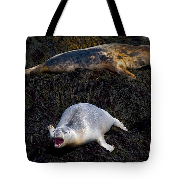 You Never Listen 5623 Tote Bag by Brent L Ander