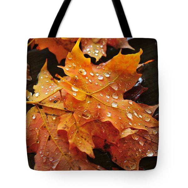 You Waited For Me To Fall Tote Bag by Catherine Reusch Daley