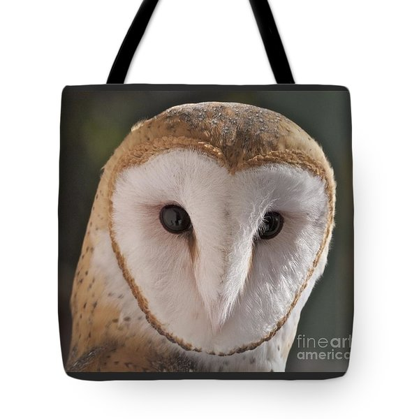 Young Barn Owl Tote Bag