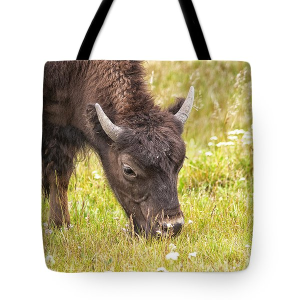 Tote Bag featuring the photograph Young Bison by Belinda Greb