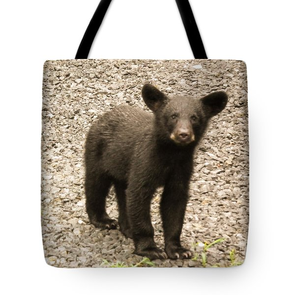 Young Cub Tote Bag by Jan Dappen