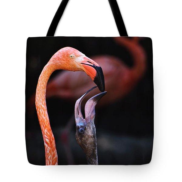 Young Flamingo Feeding Tote Bag