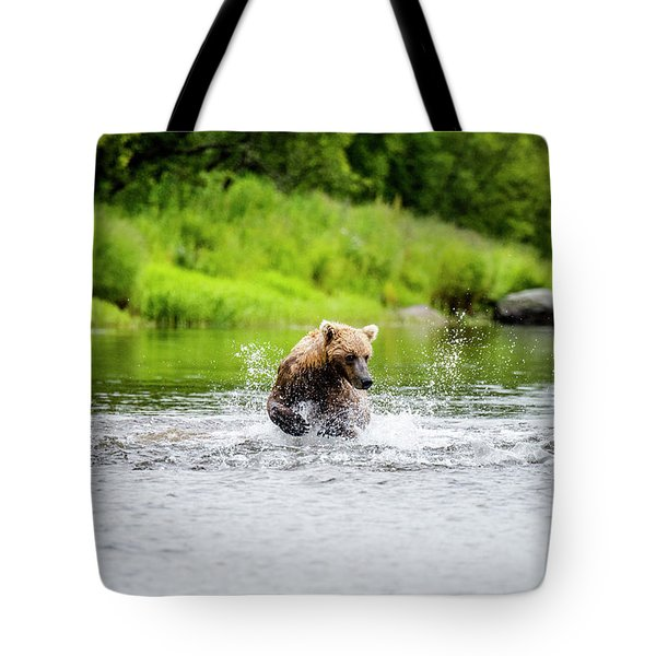 Young Grizzly Chasing Salmon Tote Bag