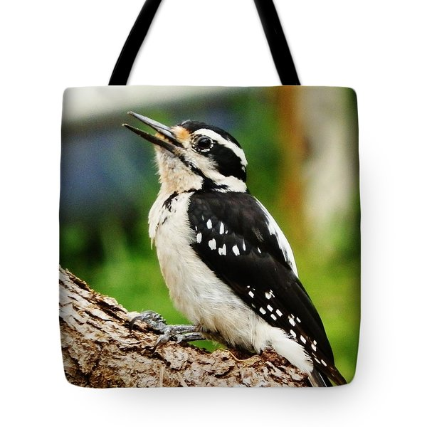Tote Bag featuring the photograph Young Hairy Woodpecker by VLee Watson