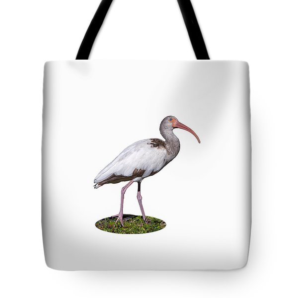 Tote Bag featuring the photograph Young Ibis Gazing Upwards by John M Bailey