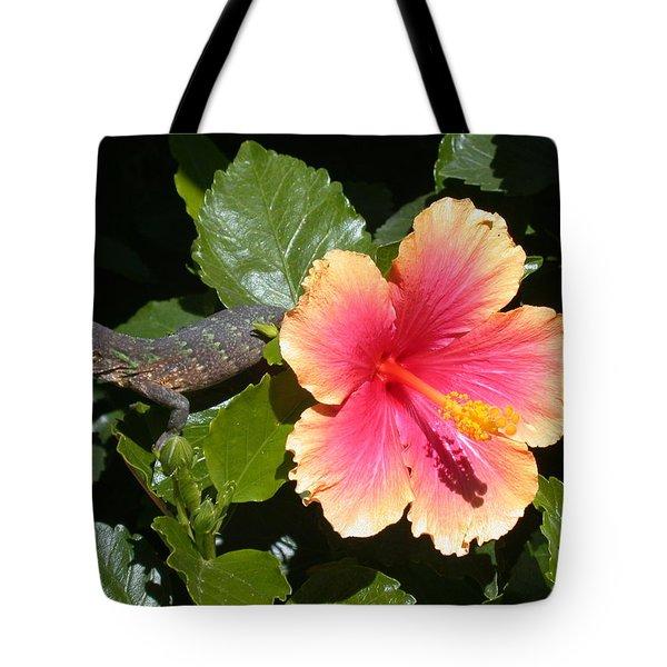 Young Iguana Tote Bag