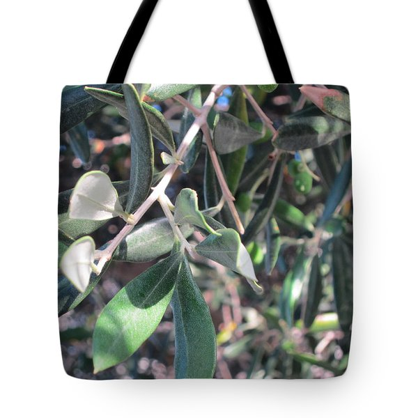 Young Olives Tote Bag by Pema Hou