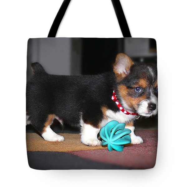 Young Otis Ray 2 Tote Bag by Mike McGlothlen