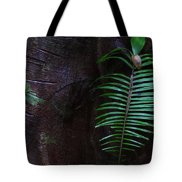 Palm Leaf Against Tree Tote Bag