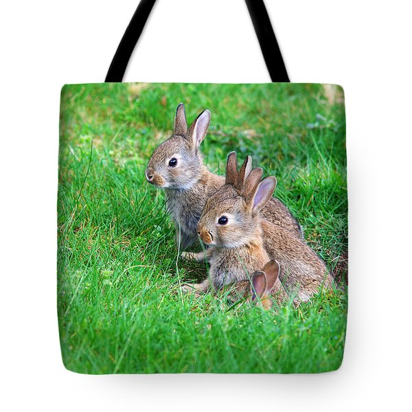 Tote Bag featuring the photograph Young Rabbits by Nick  Biemans