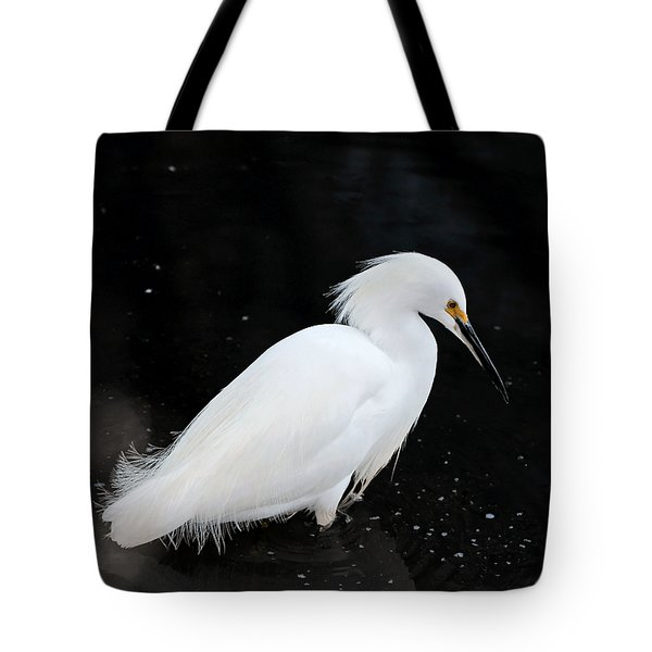 Young Snowy Egret Tote Bag