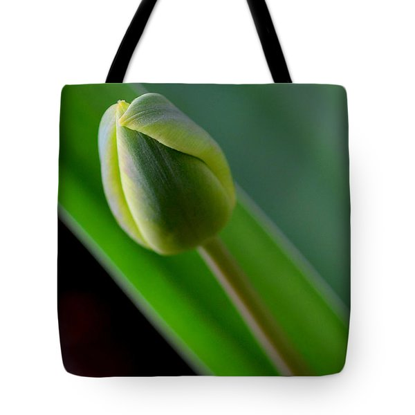 Young Tulip Tote Bag by Lisa Phillips
