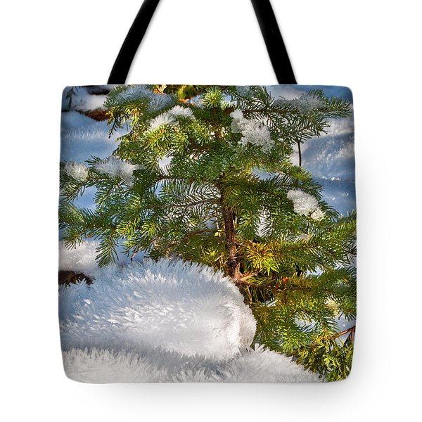 Young Winter Pine Tote Bag