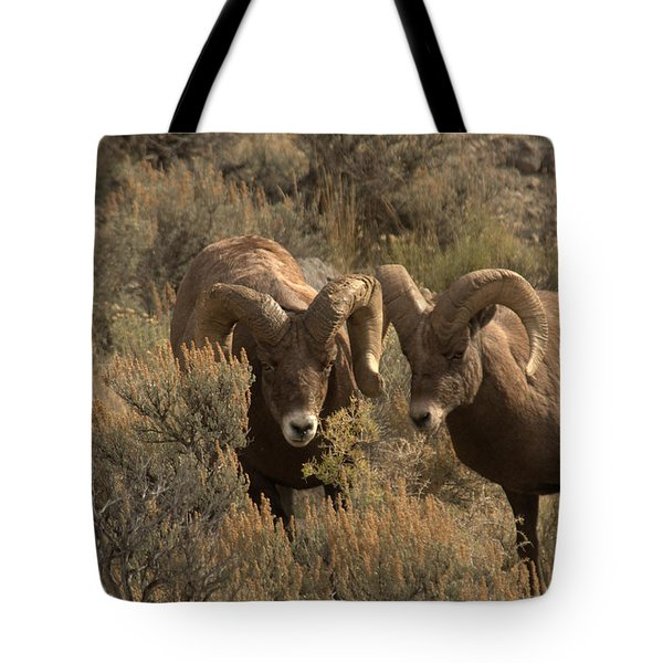 You Are In My Way Tote Bag