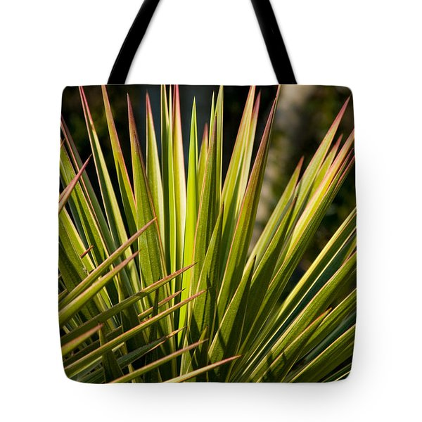 Yucca 1 Tote Bag by Frank Tozier