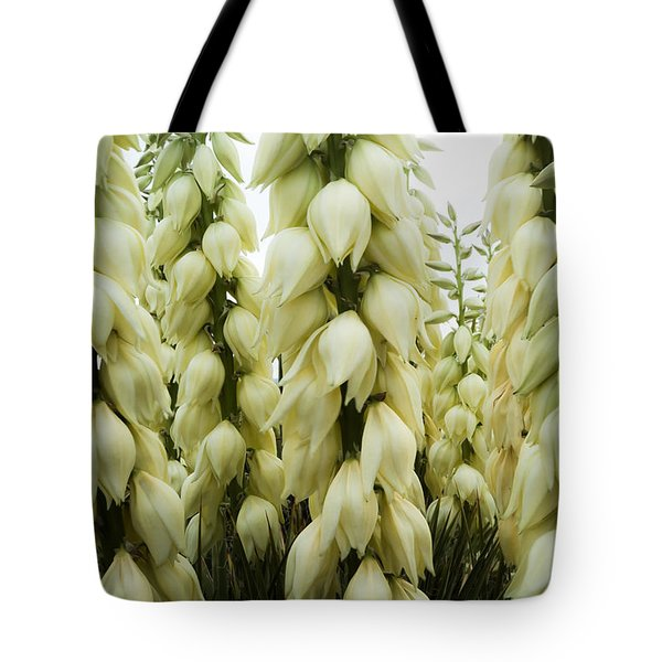 Tote Bag featuring the photograph Yucca Forest by Steven Milner