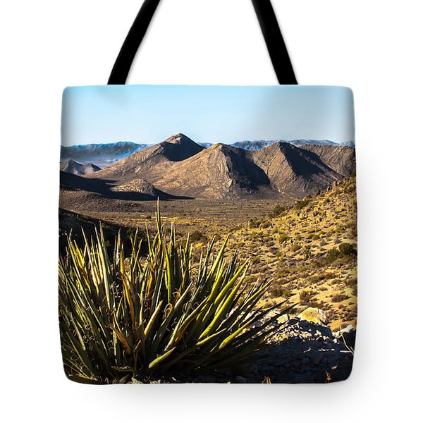 Yucca In High Deaert Tote Bag by Robert Bales