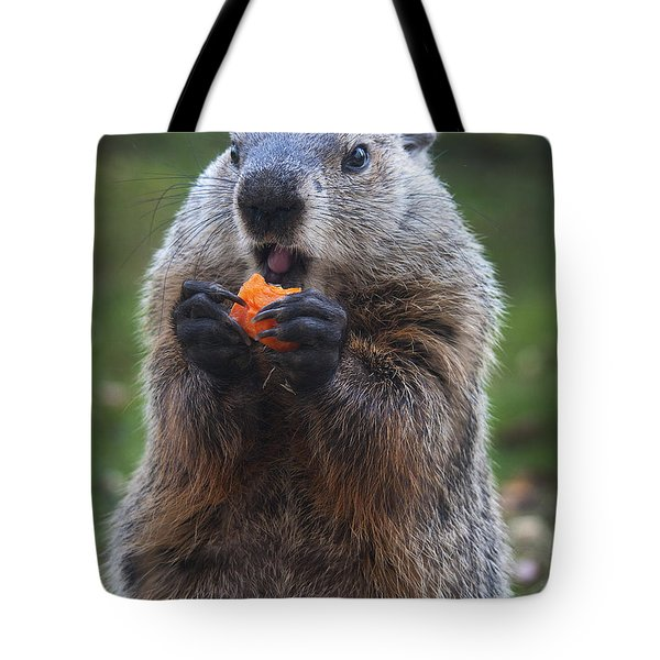 Yum-yum Tote Bag by Paul W Faust -  Impressions of Light