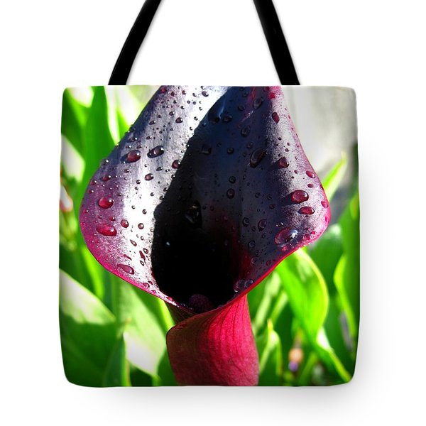 Tote Bag featuring the photograph Zantedeschia Named Black Forest by J McCombie