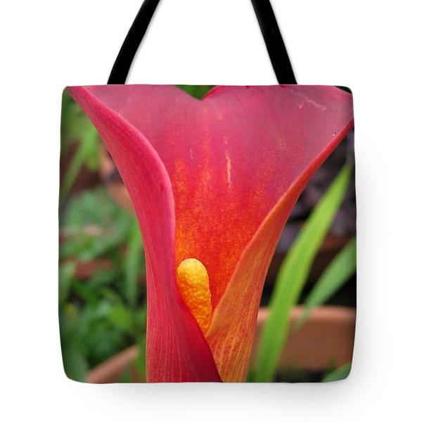 Zantedeschia Named Red Sox Tote Bag