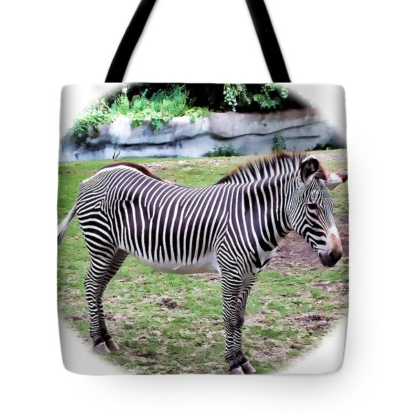 Tote Bag featuring the photograph Zebra 1 by Dawn Eshelman