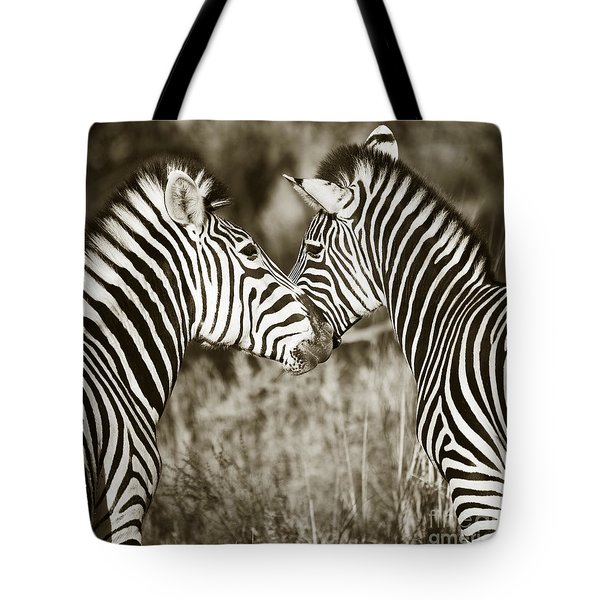 Zebra Affection Tote Bag