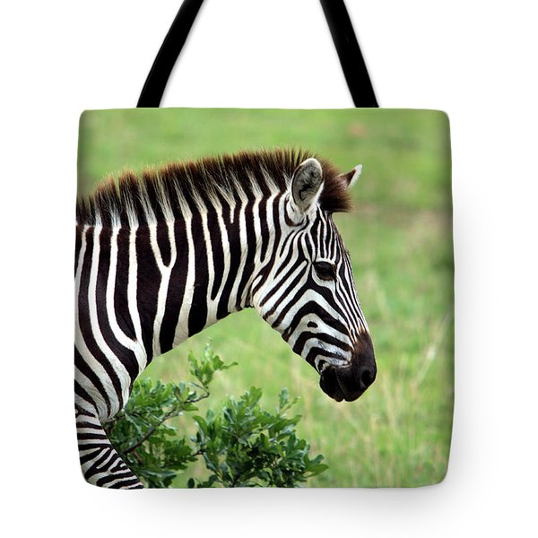 Zebra Tote Bag by Aidan Moran