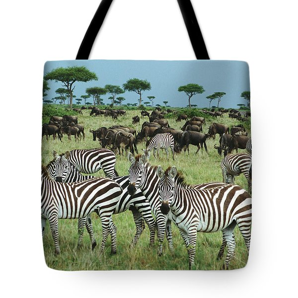 Zebra And Wildebeest Grazing Masai Mara Tote Bag