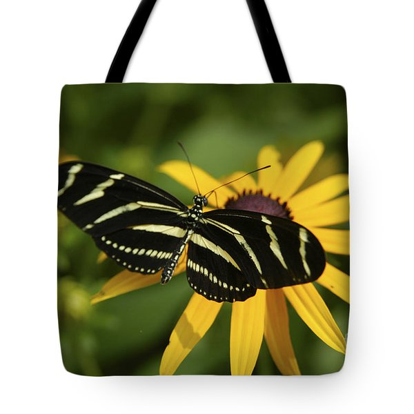 Zebra Butterfly Tote Bag
